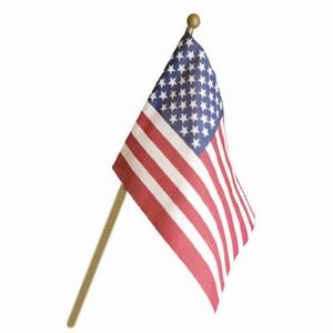 Image result for US flag stick