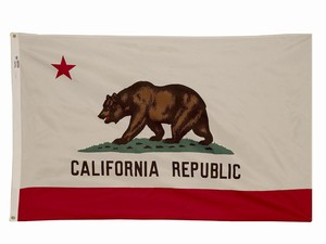 Spectramax 6'x10' Nylon California Flag