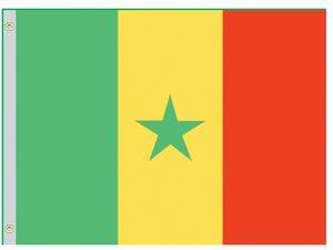 Perma-Nyl 4'x6' Nylon Senegal Flag